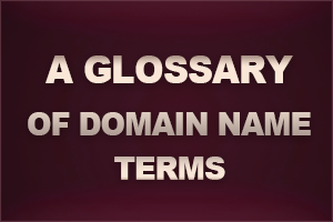 What is a domain name ?